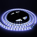 Vandtæt 5M 60W 60x5050SMD 3000-3600LM 6000-7000K Cool hvidt lys LED Strip Light (DC12V)