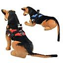 chien de chasse chercher montage harnais ceinture de sangle de poitrine trépied pour Hero GoPro 4 3+ 3 - (bleu, rouge)