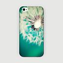 Buy iPhone 6 Case / Plus Pattern Back Cover Dandelion Hard PC 6s Plus/6 6s/6