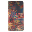 Buy Huawei Case / P9 Lite P8 Wallet Stand Full Body Flower Hard PU Leather HuaweiHuawei