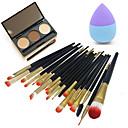 Buy 1 Eyebrow Powder Puff/Beauty Blender Makeup Brushes Dry Face Eyes Lips China