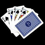 포커 게임 카드 개인화 된 선물 파란 체크 무늬