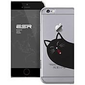 용 아이폰6케이스 / 아이폰6플러스 케이스 투명 케이스 뒷면 커버 케이스 고양이 하드 PC iPhone 6s Plus/6 Plus / iPhone 6s/6