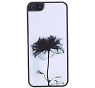 Black Flower Pattern Hard Case for iPhone 5/5S