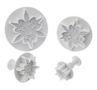 Meteor cookie cutter en forme avec le piston (4 pièces)