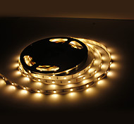10M 60W 300x5050 SMD Warm White Light LED Strip Lamp (12V)