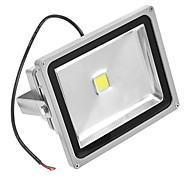 30W 6000K luz blanca LED Flood Light AC110/220V