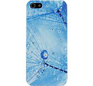piuma blu caratteristica custodia protettiva per il iphone 5/5s