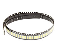 0.5W 5630SMD 5730SMD 50-55lm 6000K Cool White LED Lichterkette Par (3.3-3.6V, 100er)