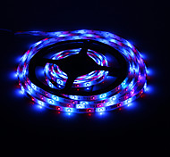 5M 18W LED Light Strip 60x3528SMD RGB della luce con telecomando (CA 85-265V)
