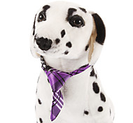 Dog Tie Purple Spring/Fall Wedding