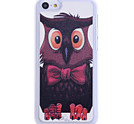 Cool modello Owl posteriore Case for iPhone 5C