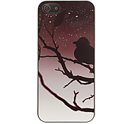 A Bird On The Tree Pattern Smooth Hard Case for iPhone 5/5S