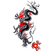 5 Stück Black Dragon Wasserdicht Tattoo (10,5 cm * 20,5 cm) HM465