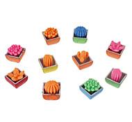 5 pezzi colorati a forma di Cactus Magia Toy Crescere