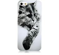Gray Cat Pattern Silicone Soft Case for iPhone4/4S