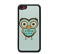 Big-Eye Owl Pattern Hard Case for iPhone 5C