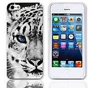 Tiger modello rigido con 3 Paia protezioni per iPhone 5/5S