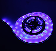 Los 5M 36W 150x5050SMD Blue Light Lámpara LED Strip (12V DC)