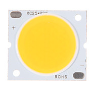 30W COB 2700-2900LM 3000K Warm Chip LED a luce bianca (30-34V, 600uA)