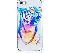Colorful Leopard Pattern Black Frame Back Case for iPhone 4/4S