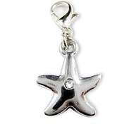 Five Point Star Tag Accessory for Collars for Pets Dogs