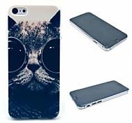 Sunglass Cat Pattern Hard Case for iPhone 6 Plus