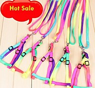 Adjustable Multicolour Pattern Dacron Harness with Leash for Pet Dogs(Random Colour)