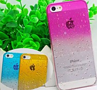 Water Transparent Monochromatic Back Cover Case for iPhone 5/5S (Assorted color)