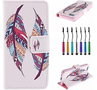 Two Pieces of Feathers Pattern PU Leather Full Body Case with Touch Pen for iPhone 5C