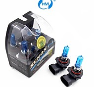 HM® Xenon Plasma 9005 12V 100W Halogen Lamp Headlight White Light Bulbs (a Pair)