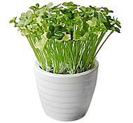 Plastic Clover Pot Plant