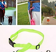 Nylon Pet Training Running Leashes Lead for Dogs and Pets (Assorted colors)