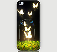Butterfly Pattern Back Case for iPhone5/5s