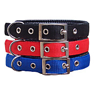 Foam Collar Is 1.5 Cm For  Dogs
