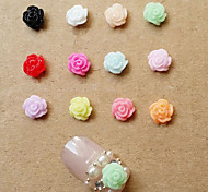 24PCS  Acrylic Resin  Flower Set Nail Art Decoration