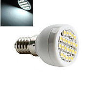 Focos LED ding yao E14 3W 24 SMD 3528 600 lm Blanco Cálido / Blanco Fresco AC 100-240 V 1 pieza