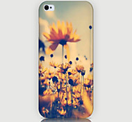 Chrysanthemum Pattern Phone Back Case Cover for iPhone5C