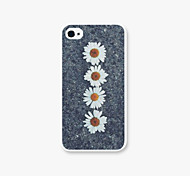 Tied for The Chrysanthemum Pattern PC Phone Case Back Cover for iPhone4/4S Case
