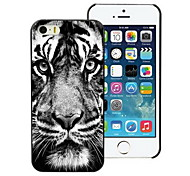 The Tiger Stare At You Design Hard Case for iPhone 4/4S