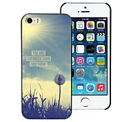 You Are Strong Than You Think Design Hard Case for iPhone 5/5S