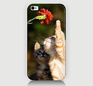 curiosidad por el caso del patrón del gato de la contraportada para iPhone4 / 4s