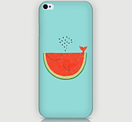 Watermelon Pattern Phone Back Case Cover for iPhone5C