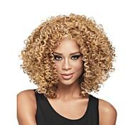 жен. Парики из искусственных волос Без шапочки-основы Средний Кудрявые Темно-русый Парик в афро-американском стиле Для темнокожих женщин