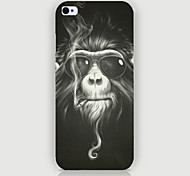 The Gorilla Pattern Phone Back Case Cover for iPhone5C