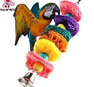 FUN OF PETS® Colorful Rope Loofah Chewing Lot with Beads for Birds