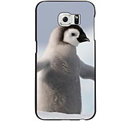 The Penguin  Pattern PC Hard Case for Samsung Galaxy S6