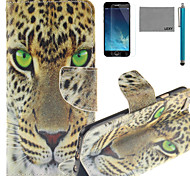 LEXY® Green Eyes Leopard Pattern PU Full Body Leather Case with Screen Protector and Stylus for iPhone 6/6S Plus
