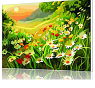DIY Digital Oil Painting  Frame Family Fun Painting All By Myself  Colorful Valley X5024