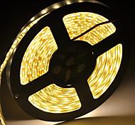 LED-Lichtleiste Leuchtdiode 5050smd 300LED wasserdicht DC12V 5m / lot